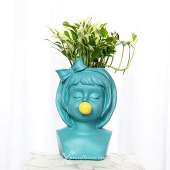 Turquoise Pops (Money Plant 'N' Joy)